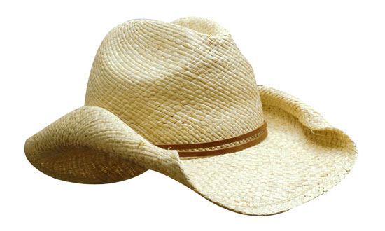 Ladies Straw Fashion Hat