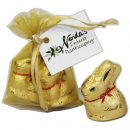 Organza Bag With X2 Gold Lindt Bunny 20G