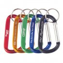 Carabiners w/ Keyring