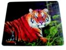 Standard Promotional Mouse Mat