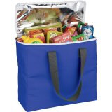 Blue Arctic Zone 30-Can Foldable Freezer Tote