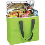 Green Arctic Zone 30-Can Foldable Freezer Tote