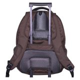 Espresso Back Exton Backpack