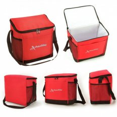 Handy Cooler Bag Express