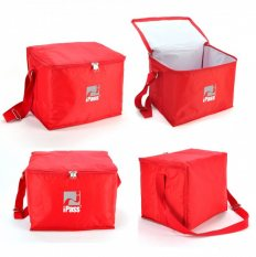 12 Can Cooler Bag Express