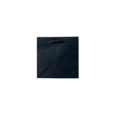 Laminated Matte Petite Navy Paper Bag