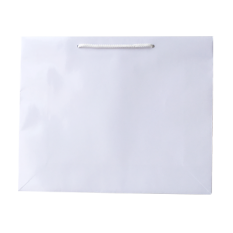 Laminated Gloss Galleria White Paper Bag