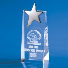 3D Crystal Star Wedge Trophy