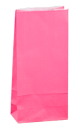 Paradise Pink Coloured Gift Paper Bag